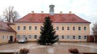 Weihnachtsbaum Jagdschloss
