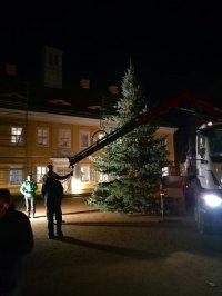 Aufstellung des Weihnachtsbaums