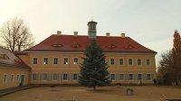 Der Baum steht er an neuem Ort – gesichert mitten im Schlosshof.
